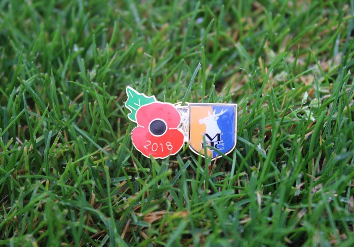 Stags poppy pin badges now available - News - Mansfield Town